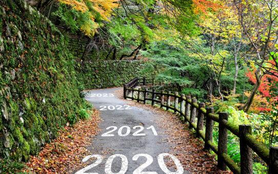 Ausgabe 11/20: Wohin führt der Weg für unsere Gemeinden?